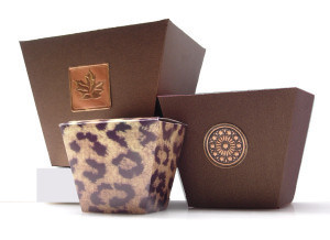 Gift Boxes And Favor Boxes For Sale